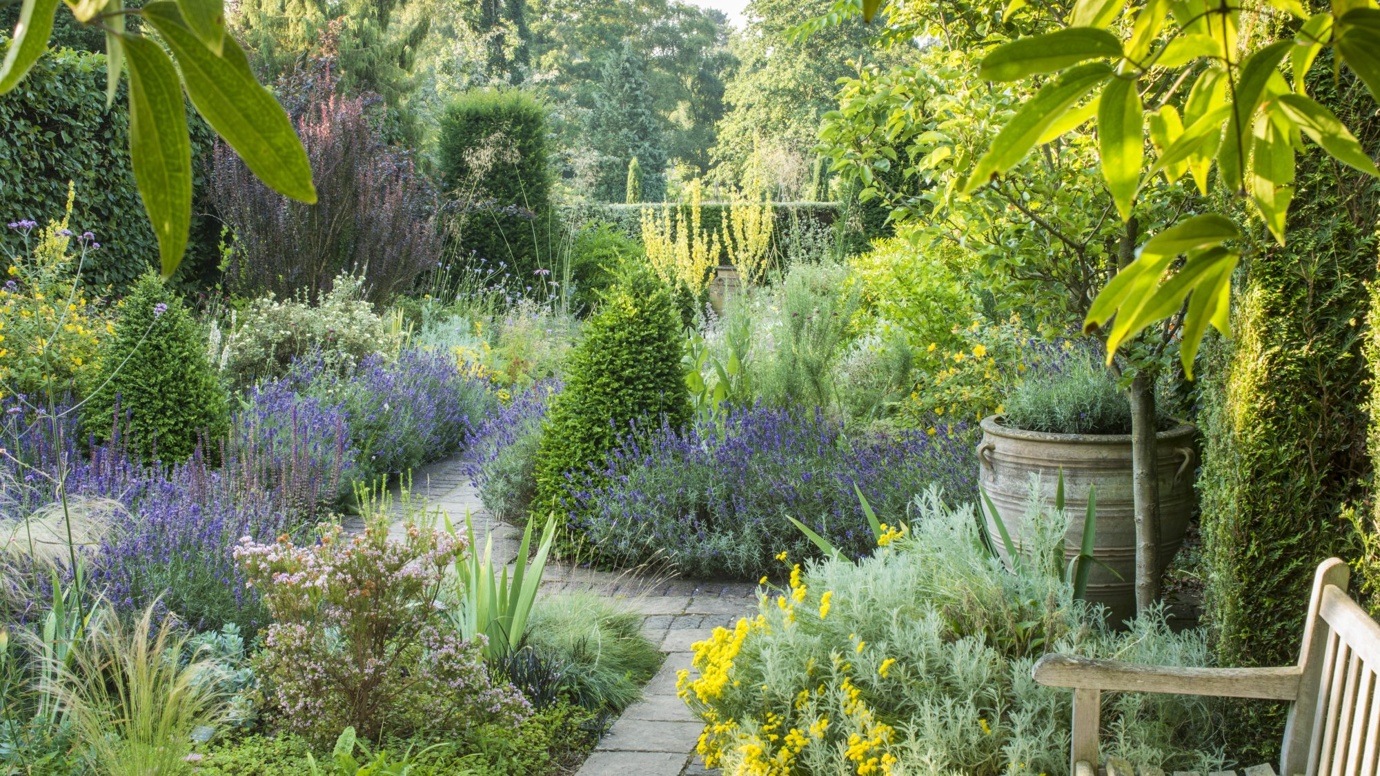 CANCELLED: ONLINE COURSE: Introduction to garden design ...