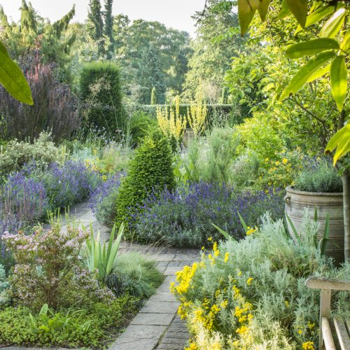 ONLINE COURSE: Introduction to garden design, site survey, appraisal and scale drawing